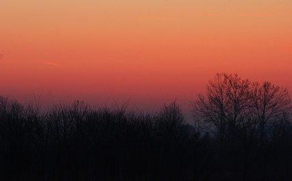 Kentucky Dawn (89/365)