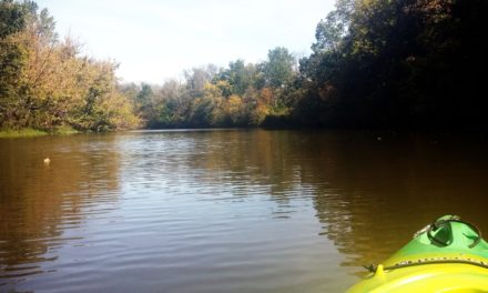 Kayaking Shelby Lake