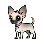 EClaire the Chihuahua