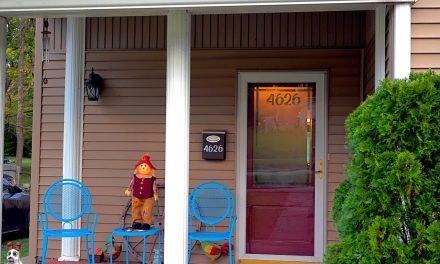 DIY Front Door Window Privacy